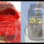 Proteína da Carne ou do Leite?