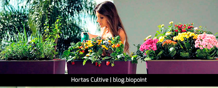 Horta-Cultive-Biopoint