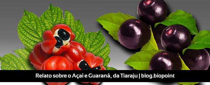 Relato sobre o Açaí e Guaraná, da Tiaraju
